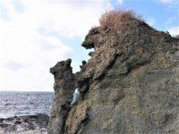 せたな町の海岸沿いにたたずむ「親子熊岩」!親グマと子グマの岩にまつわる悲しい物語