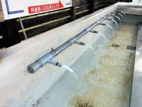 クラーク博士ゆかりの地、北広島市の湧水「アンビ・ウォーター(Ambi Water)」は支笏湖系の天然水!