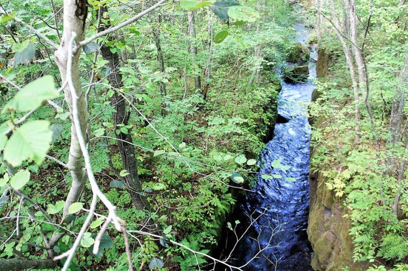 橋の上から見下ろした樽前ガローの渓谷