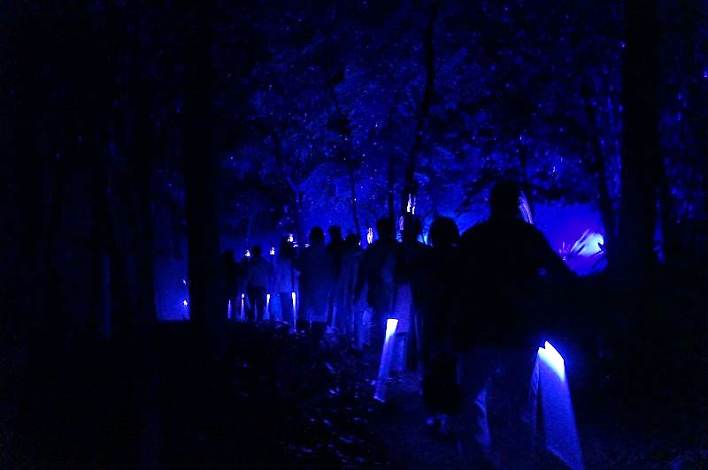 KAMUY LUMINA(カムイルミナ)/阿寒湖 リズムスティックという杖を片手に森の中を進む