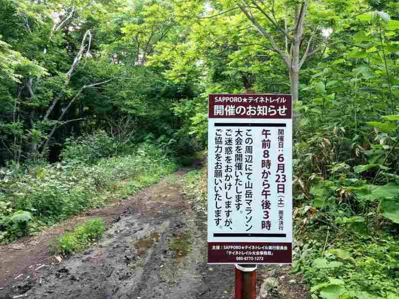 平和の滝 登山道 はトレイルランのコースにも