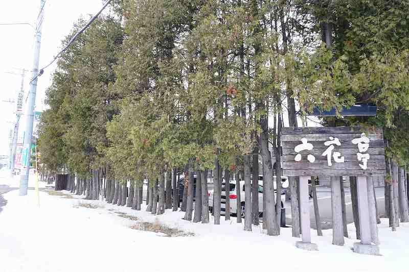 駐車場が木で囲まれている