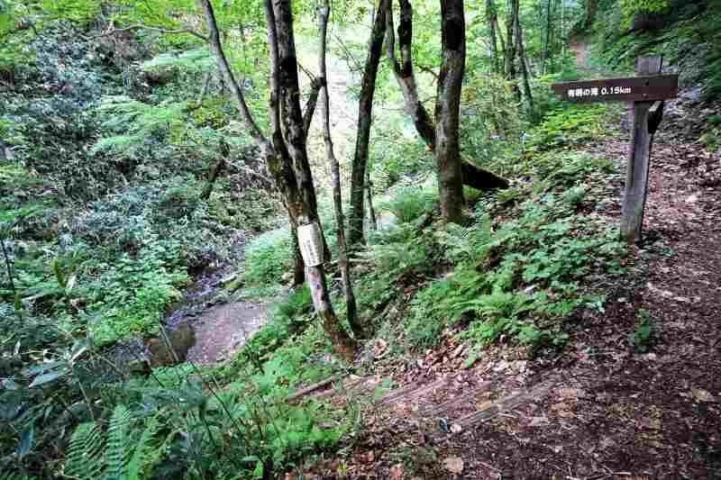 有明の滝 散策路の途中にある下り階段