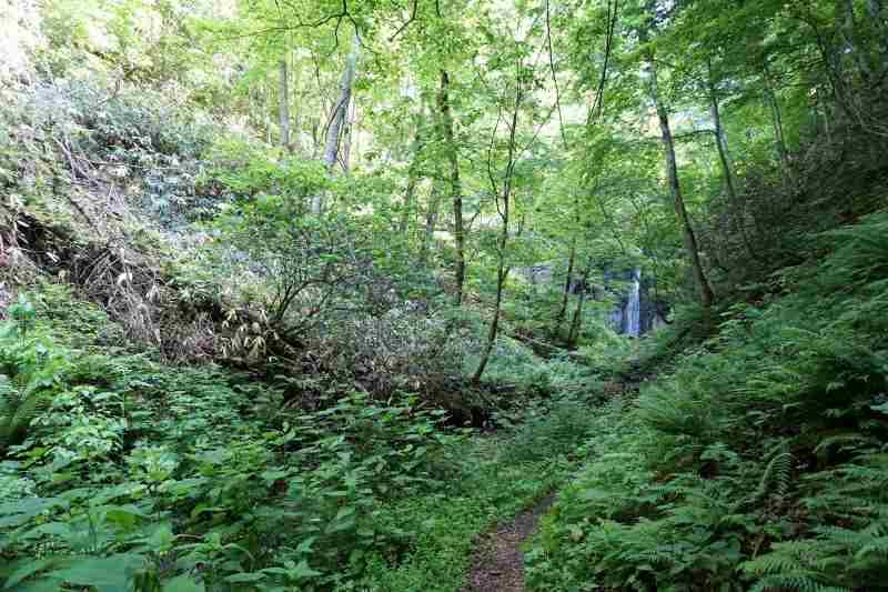 散策路の階段を下った先にみえる 有明の滝