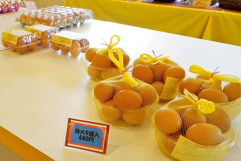 コッコテラス で販売している 永光農園 の平飼い有精卵