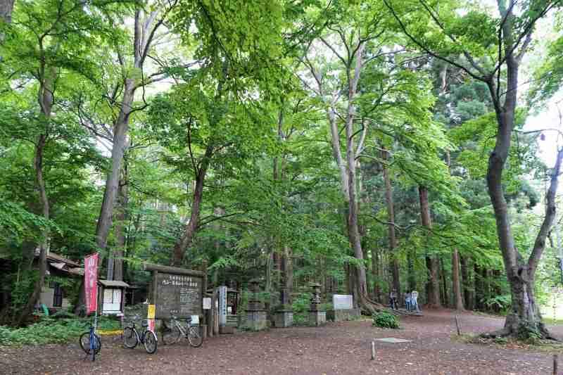 札幌自然歩道 八十八ヶ所ルート の 入口