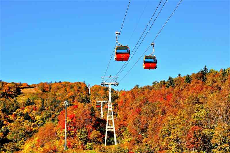 秋の札幌国際スキー場とゴンドラ