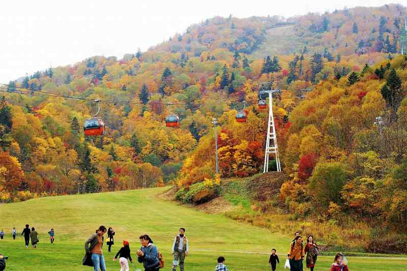 札幌国際スキー場の紅葉とゴンドラ