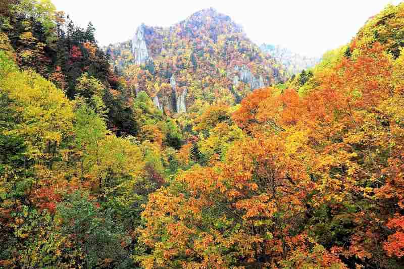 豊平峡の千丈岩の紅葉