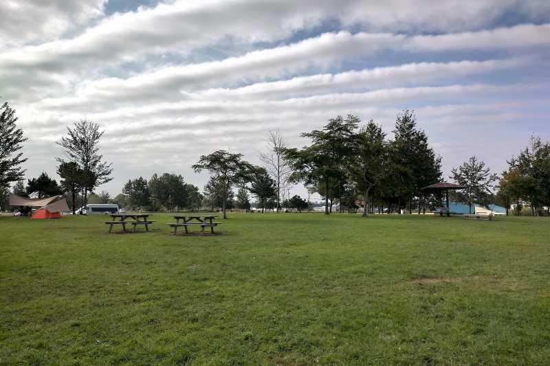 「三重緑地公園キャンプ場」のテントサイト