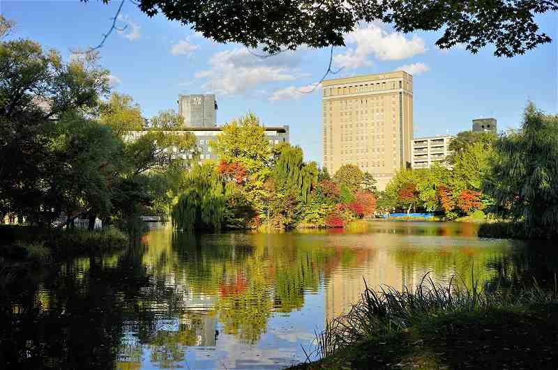 池のまわりを色づいた木々が囲っている「中島公園」の園内の様子