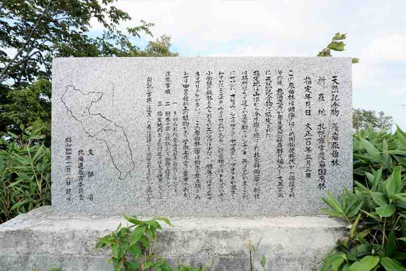 天然記念物 藻岩原生林碑