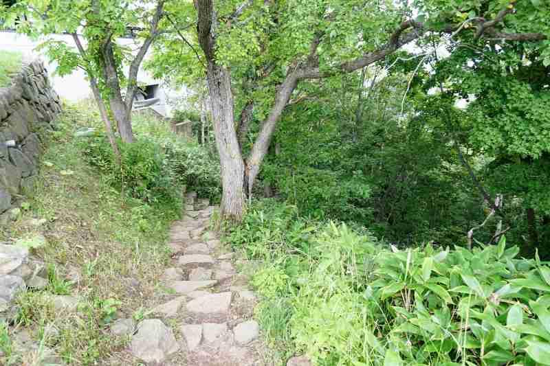 藻岩山 登山道