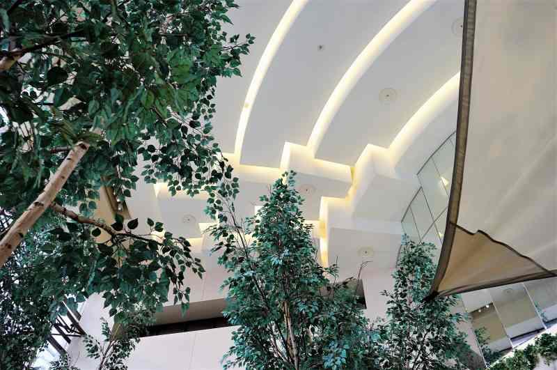 高い天井と緑が豊かなファームトゥテーブルテラの内観