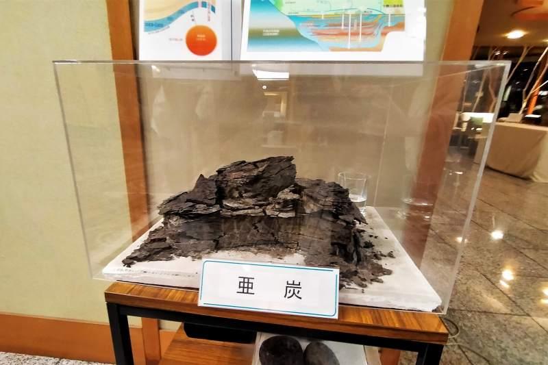 十勝川温泉第一ホテル 亜炭