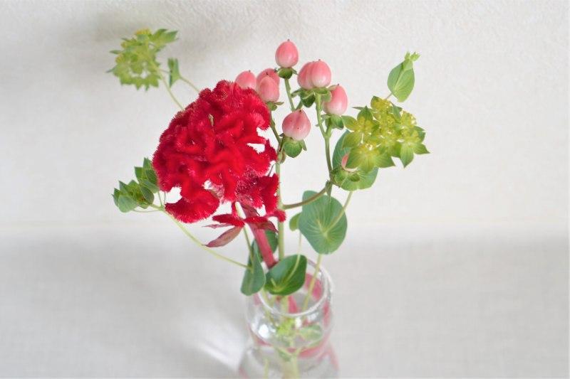 ブルーミー 体験プランのお花