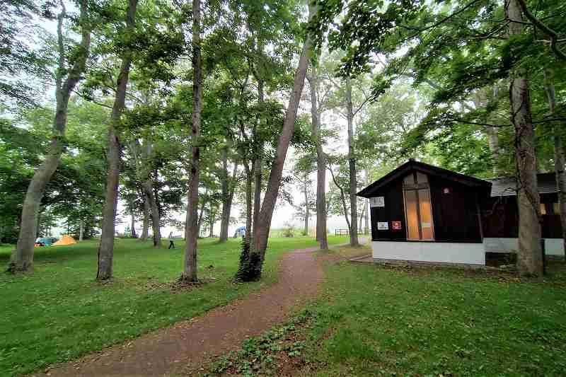 東大沼キャンプ場の林間サイト