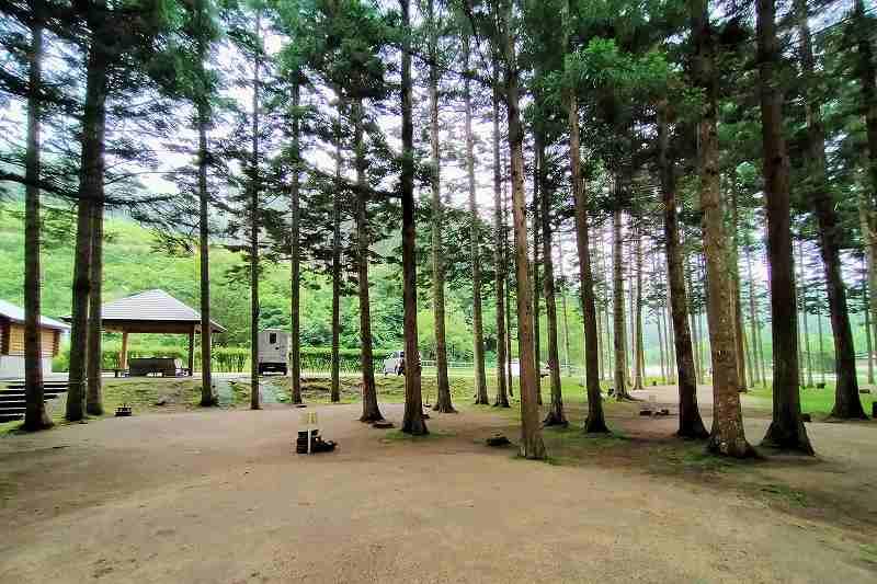 戸井ウォーターパークキャンプ場のフリーサイト