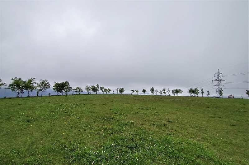 きじひき高原キャンプ場の 丘の上サイト