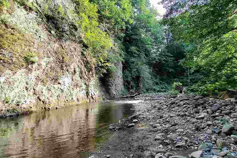 晴好雨喜の河原