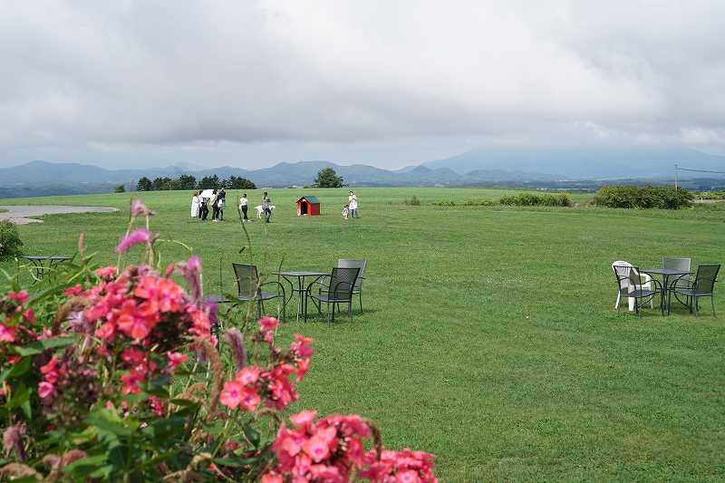 広大な草原にテラス席が並んでいる